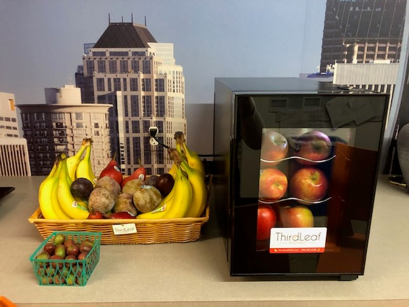 Office-Fruit-Delivery-Renton-WA